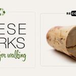 Houlihan cork recycling