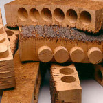 Cork strips from cork bark