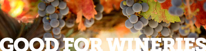 good for wineries grape banner