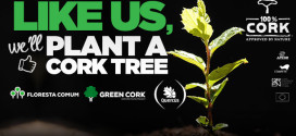 100% Cork Launches Social Media Campaign to Plant Cork Trees in Northern Portugal