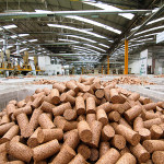 Wine Cork Industry (31)
