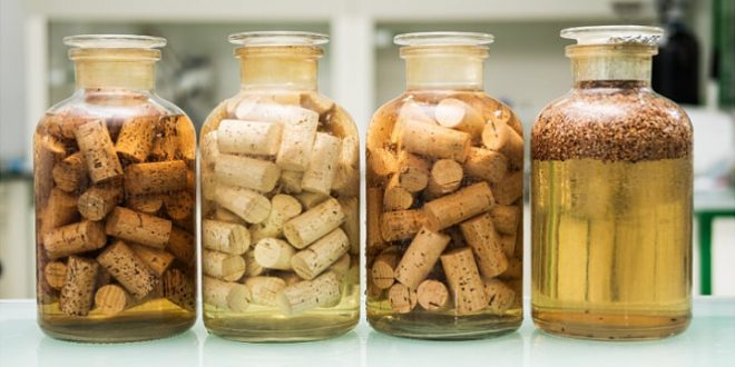 How Cork Producers Are Making TCA Free Corks